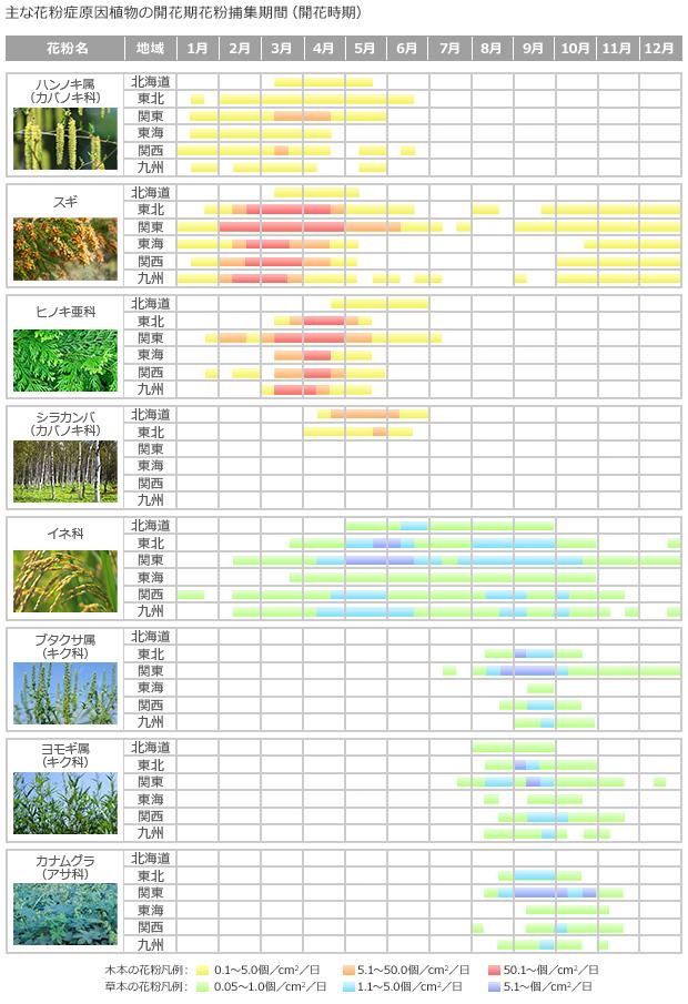 花粉カレンダー 画像
